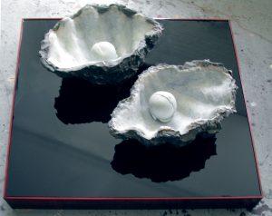 Zwillingsmuschel, 2002, Wachs, Holz, Acrylglas ca. 80 x 80 x 44cm - Wolfgang Stiller